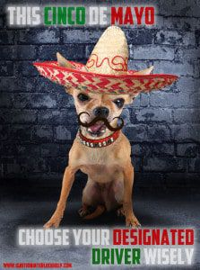 celebrate cinco de mayo safely